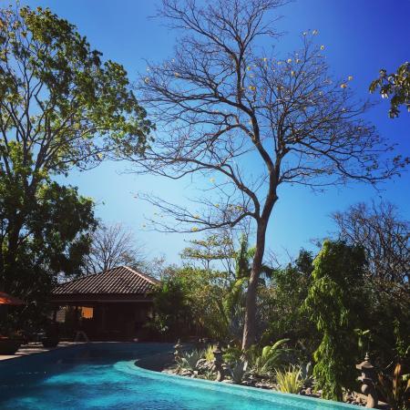 Bodhi Tree Spa Prices