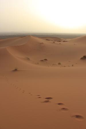 Dar el Khamlia: Merzouga Desert Footprints www.matthewlees.com