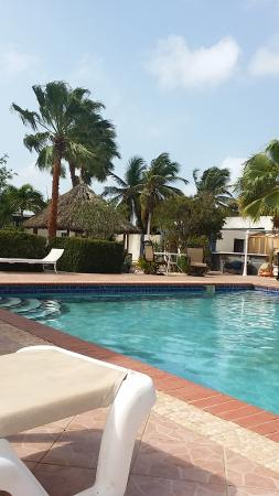 Driftwood Gardens $85 ($̶9̶2̶)   Prices U0026 Guest House Reviews    Aruba/Savaneta   TripAdvisor