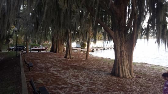 Lake Virginia (Winter Park, FL): Top Tips Before You Go ...