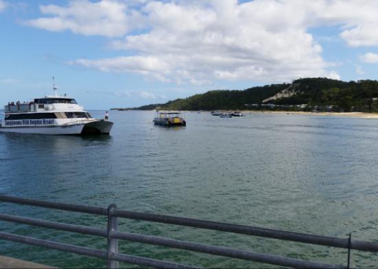 Tangalooma Island Resort Tripadvisor