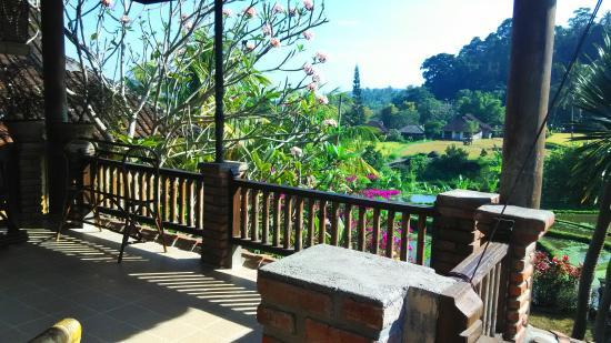 Puri Sawah Bungalows & Restaurant: room B - balcony