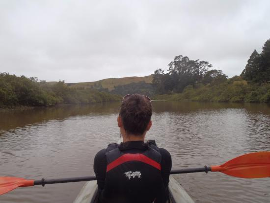 Puhoi River Canoe Hire Ltd Kayak Trips: On the river - 2