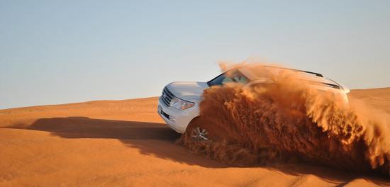 Desert Life Tourism LLC