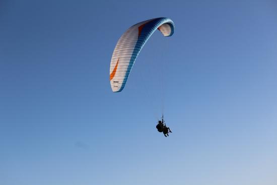 Dolphin Paragliding