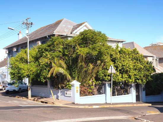 Kingslyn Guesthouse: Das Hotel liegt blickgeschützt hinter schönen Büschen, dort können Gäste auch im Freien frühstüc