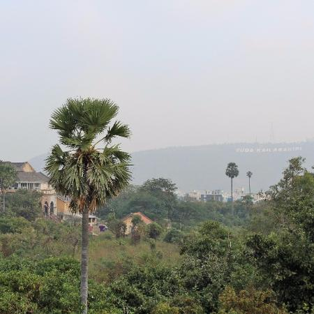 Manasa Homes