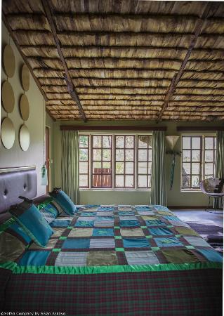 Hatari Lodge: The green zebra room