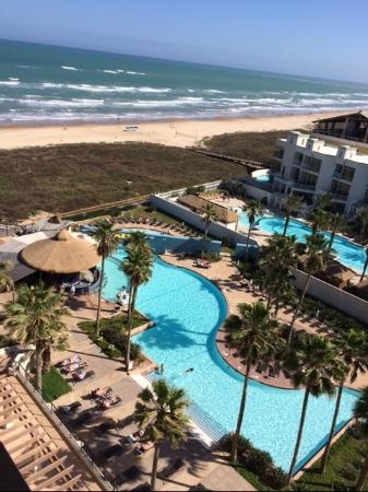 Pearl Hotel South Padre Island Reviews