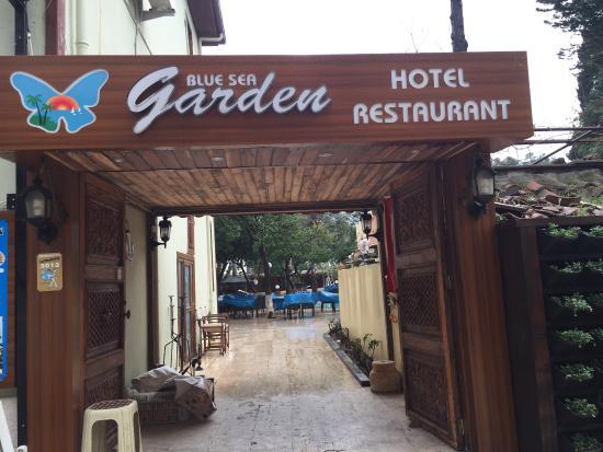 Blue Sea Garden: photo3.jpg