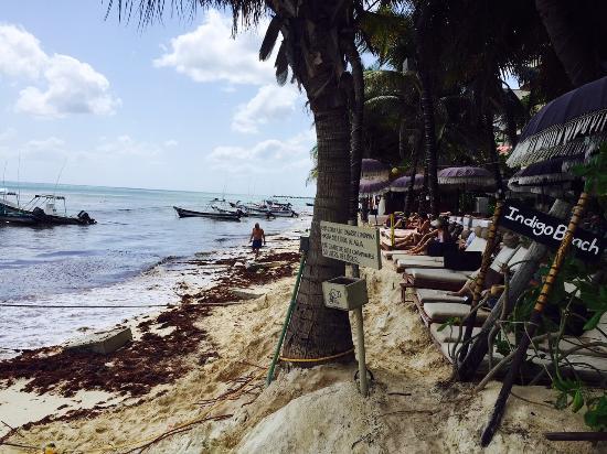 Porto Playa Condo Hotel Beachclub Picture