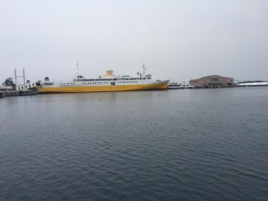 八甲田丸 - 青森市Seikan Ferry Memorial Ship Hakkodamaru的圖片 - TripAdvisor