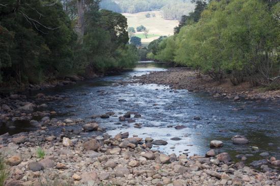 Gunns Plains, ออสเตรเลีย: Stream at the park