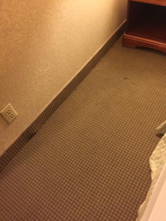 Ramada Chatsworth: Carpet worn and stained