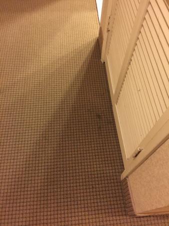 Ramada Chatsworth: Carpet stained