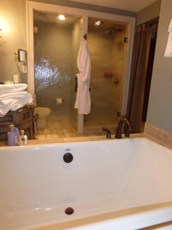 soaking tub unfortunately the toilet is behind a glass shower door rh tripadvisor co uk