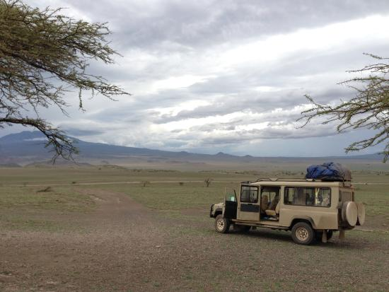 Misele Africa Safaris