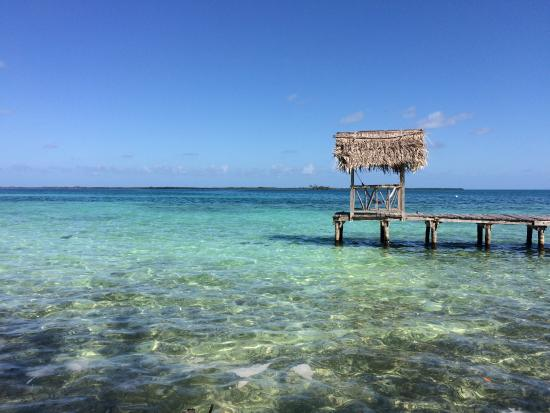 Thatch Caye, เบลีซ: Just outside our island cabana was this view! NO filter needed!! :D