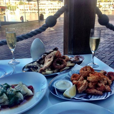 Blue Fish Restaurant Darling Harbour Reviews