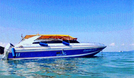 BB Sea Lion