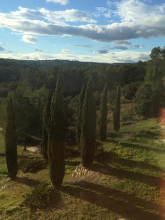 """Saint-Clement-de-Riviere, ฝรั่งเศส: View from Apartment """"Petit Verdot"""""""