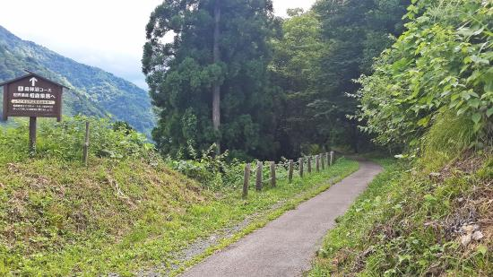 Minshuku Goyomon : the path leading to the village