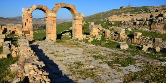 Souk Ahras Province, Argélia: Khemissa Roman Ruins