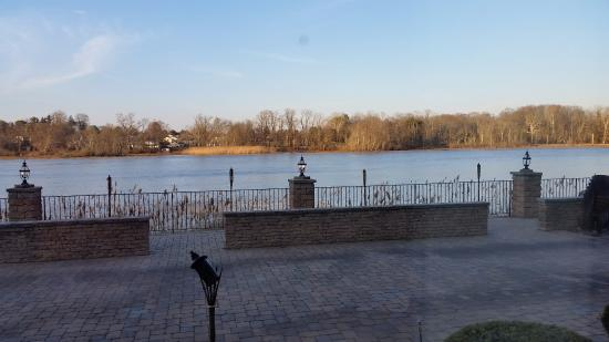 Carluccis Waterfront Creek View