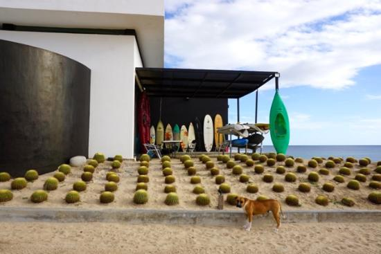 Vidasoul Hotel