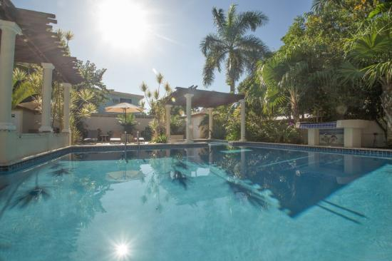 Blue Boy Inn: Our sparkling-clean pool is paradise!  On-site owners keep the grounds clean and in order.
