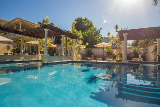 Blue Boy Inn: Soak up the tropical sunshine in our large, sparkling-clean pool.