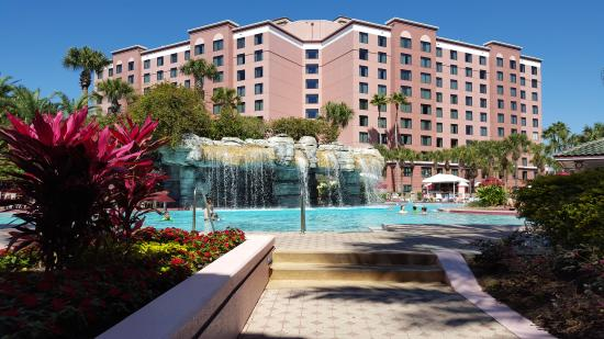 live entertainment by the pool picture of caribe royale orlando rh tripadvisor com