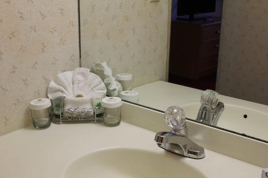 Groton Inn and Suites: Bath Amenities