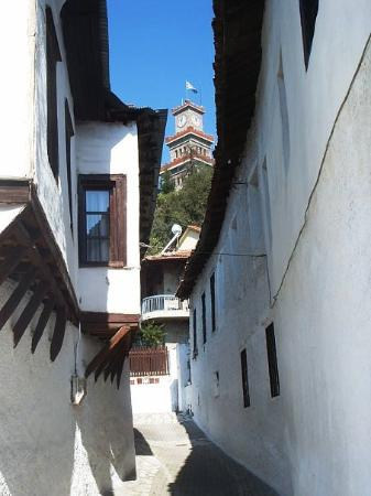 Old City of Trikala