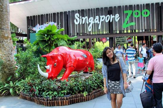 Image result for Singapore Zoo
