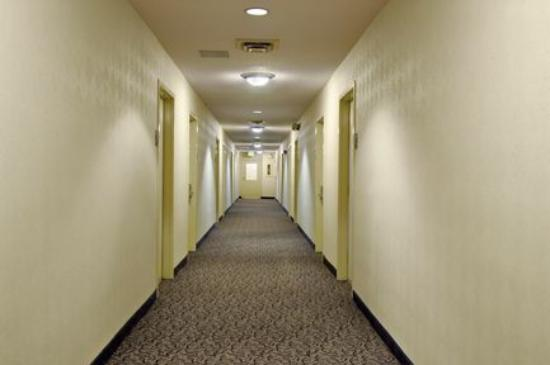 Hotels That Allow Smoking In Rooms Chicago