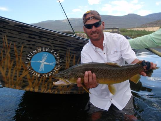 Dutch John, UT: Green River Brown Trout