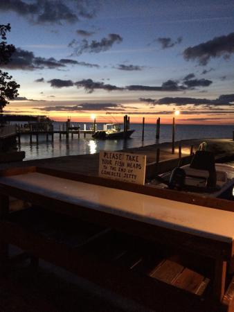 Coral Bay Resort: photo1.jpg