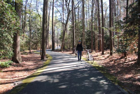 Stevensville, MD: Nice paved trail for both bikers and walkers