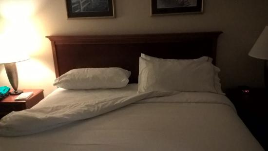 Holiday Inn Express La Porte: Bed