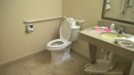 Holiday Inn Express La Porte: Toilet
