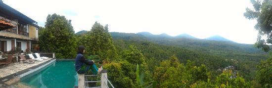 Puri Alam Bali Bungalows: P_20160302_065539_PN_large.jpg