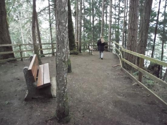 Courtenay, Canadá: LOOKOUTS