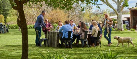 Adelaide Hills, Australia: Barristers Block Vineyard