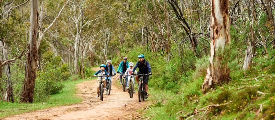 Adelaide Hills, Australia: Escapegoat Mountain Bike Adventures