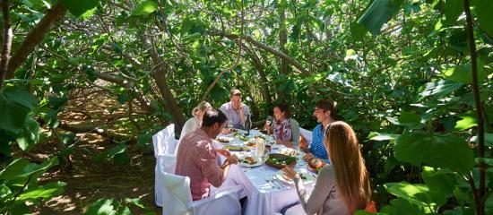 Kangaroo Island, Australia: Enchanted Fig Tree Lunch, LifeTime Private Retreats
