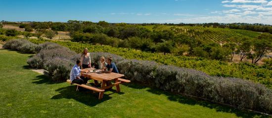 Mount Gambier, Australien: Cape Jaffa Wines