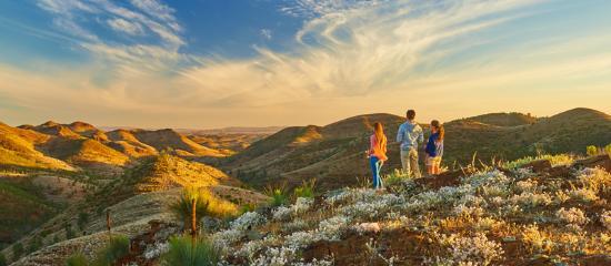 Flinders Ranges, Australia: Yacca Lookout, Willow Springs Station