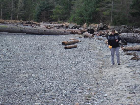 Courtenay, Canada: TREASURE HUNTING