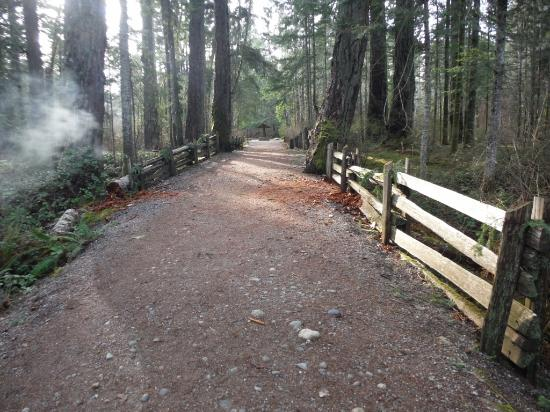Courtenay, Canada: EASY PATH FROM PARKING TO BEACH